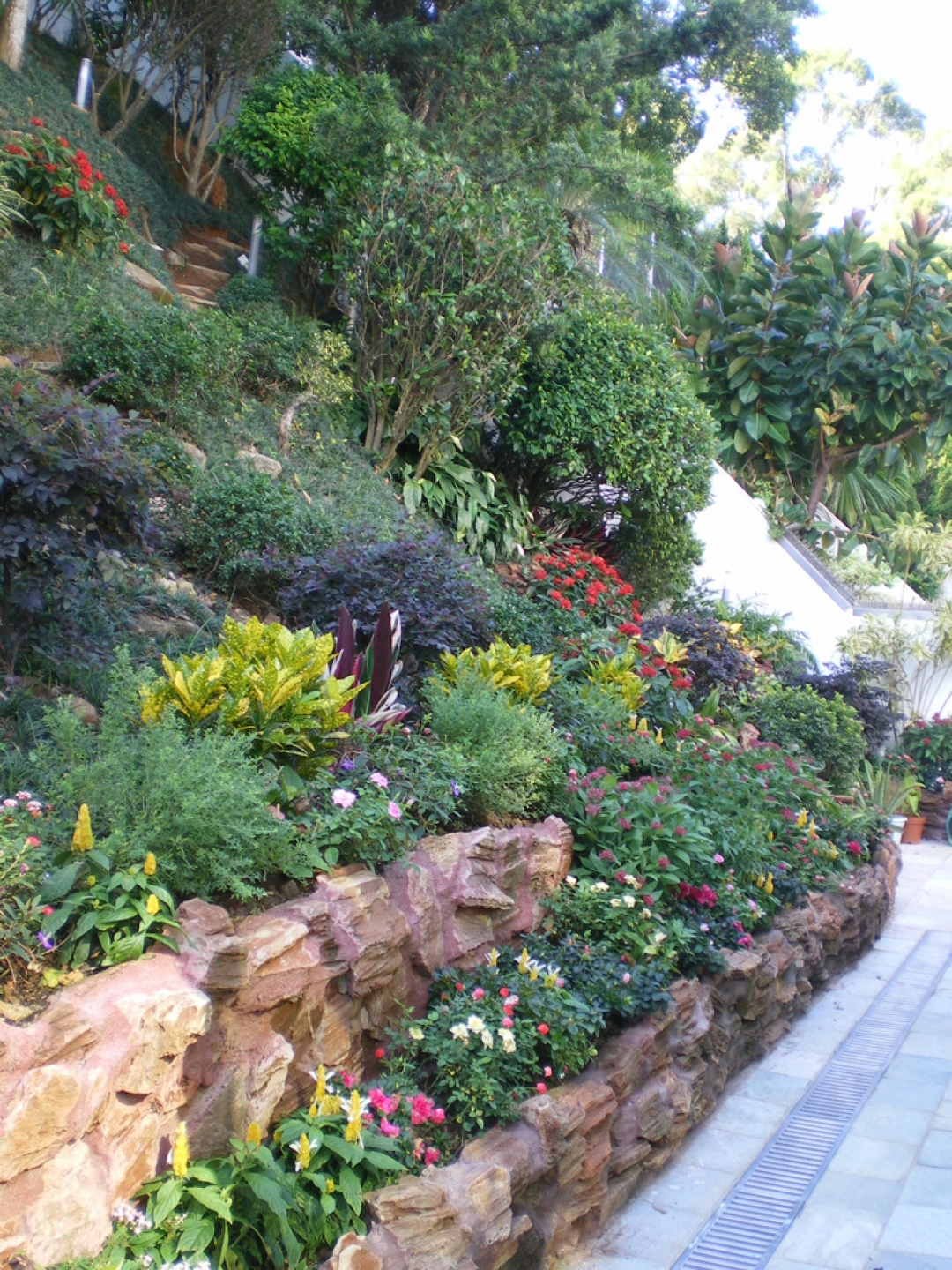My Garden Landscape Design & Engineer Company Limied